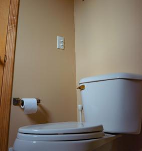 トイレその2